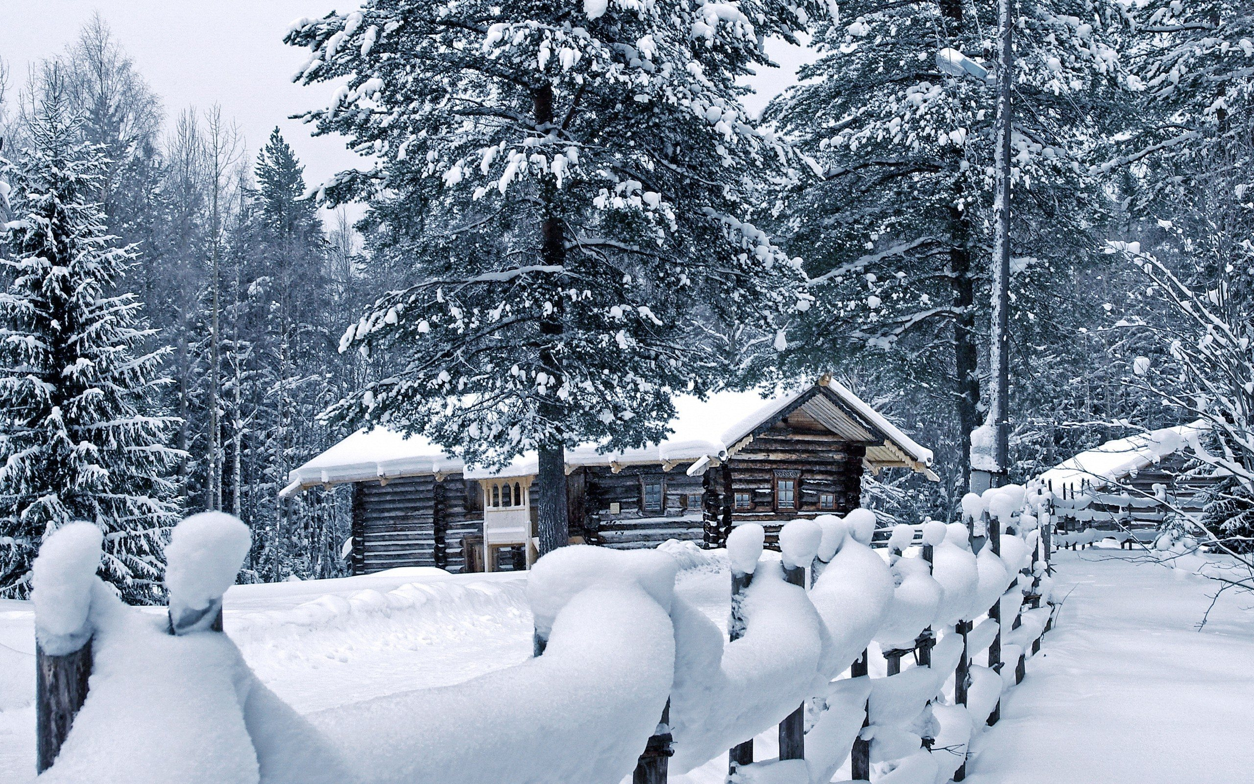 OBRÁZEK : zima__winter_2560x1600_012.jpg